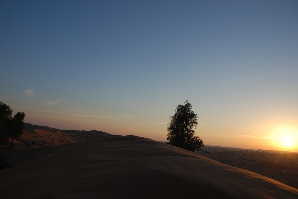 Alma Desert