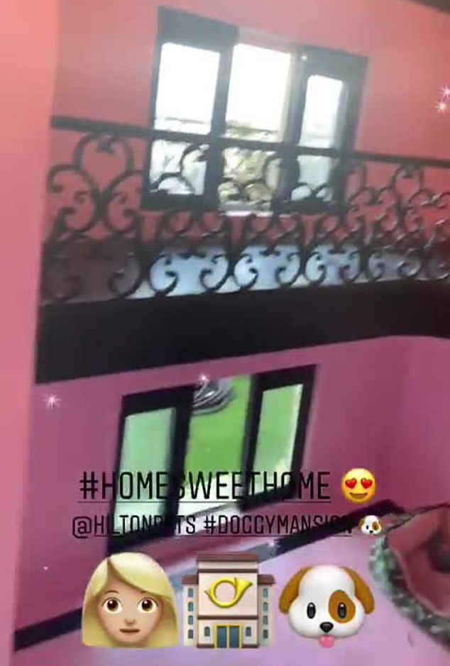 Inside Paris Hilton $325000 dog mansion