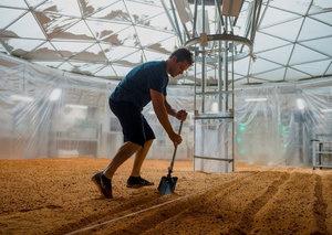 The UAE wants to grow tomatoes on Mars
