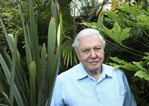 David Attenborough is coming back to TV screens later this year