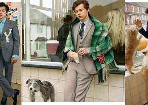 Harry Styles' Gucci Campaign is a masterclass in elegant tailoring