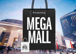 Why the 'mega mall' is so important in the UAE