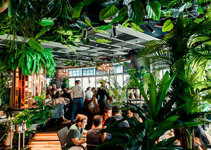 Review: Welcome to the Jungle at Dubai's Mama Zonia restaurant