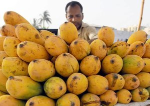 Dubai will host Pakistan Mango Festival at Versace Hotel