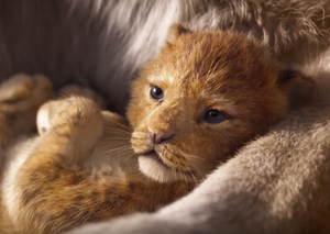 New The Lion King clip is overwhelmingly uplifting
