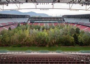 This football stadium has its own forest