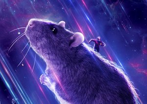 Meet the REAL hero of 'Avengers: Endgame': The Rat