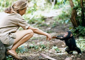 Dr Jane Goodall added to Emirates Airline Festival of Literature line-up