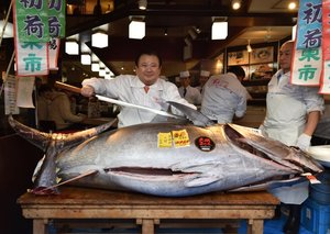 Man pays US$1.8 million for… a fish