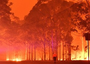 These celebrities have pledged millions to Australian wildfire relief efforts