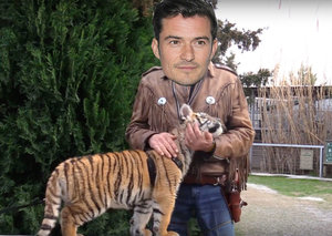 Orlando Bloom in the running to play Joe Exotic in new film