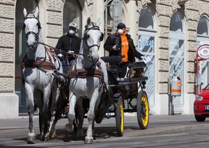 Vienna is using horse-drawn carriages to deliver food