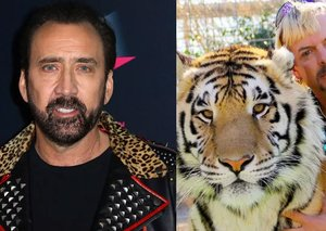 Nicolas Cage will play Tiger King Joe Exotic in a new TV series