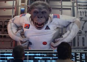 From dogs to the chimpanzee in space: The sad history of animal astronauts