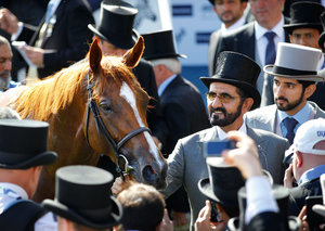 Dubai ruler Sheikh Mohammed's new documentary explores his relationship with his 'first horse'