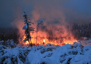 What is a zombie wildfire, and how is it burning in the arctic?