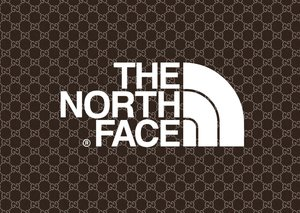 Gucci and The North Face tease exclusive collaboration