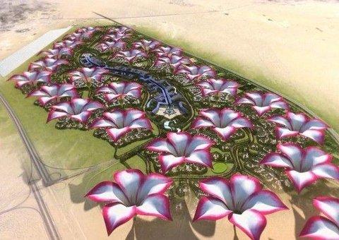 Dubai's Desert Rose City is set for construction