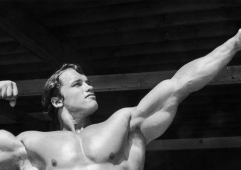 Try Arnold Schwarzenegger's free 9-move home bodyweight workout