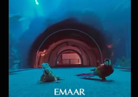 Animals enjoy a day out in Dubai Mall during Covid-19 lockdown