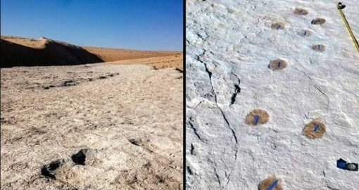 Oldest life in Saudi Arabia found; over 120,000-years-old