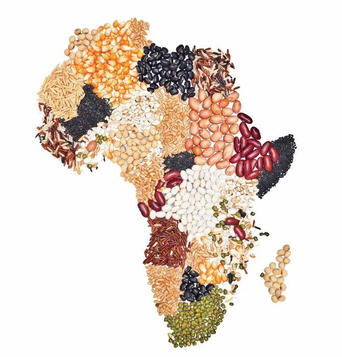 Africa, Business, Ethiopia, Exit notes, Farming, Globalisation, Globalization, Land, UAE, War