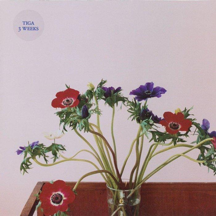 MUSIC: Tiga / RECORD: 3 Weeks (2006) / YEAR: 2006 / ART: Wolfgang Tillmans / ARTWORK: Photograph