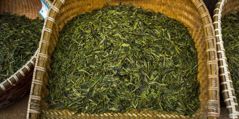 Green tea, Tea, Should i drink green tea, Why drink green tea, Drinking green tea, Benefits of green tea, Health benefits, Health benefits of green tea
