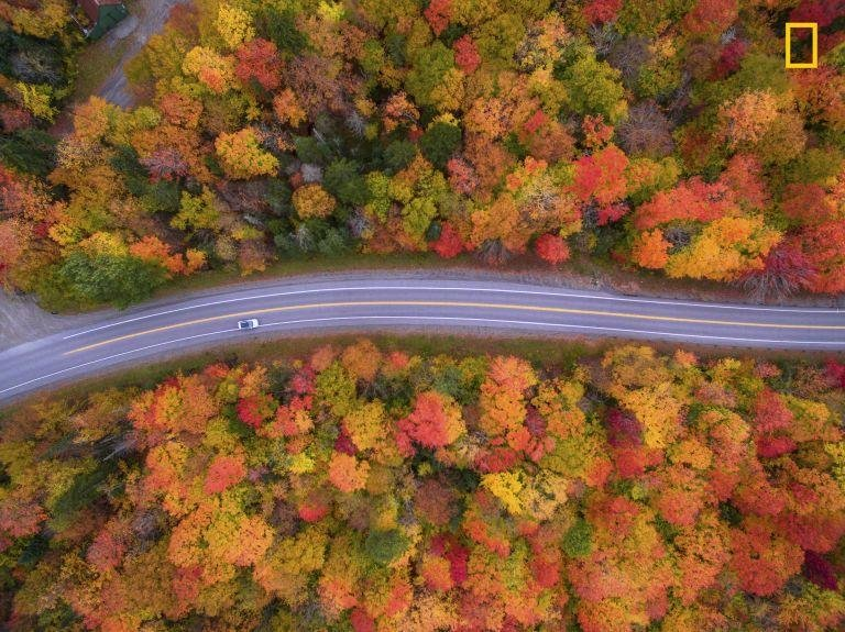 """A DRIVE TO REMEMBER -  """"Aerial view of the scenic drive and the beautiful fall colors of New Hampshire. I used a drone to capture the fall colors that cannot be seen from the road."""""""