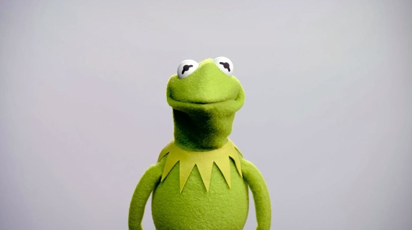 Kermit the Frog, New Voice, Matt Vogel, The Muppets