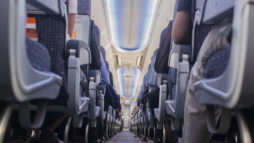 Travel, Airplane, Plane, Cabin crew, Flights