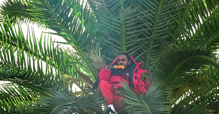 Kendrick Lamar, Kingh's Dead, Black Panther