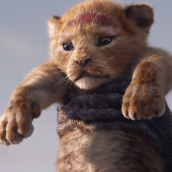 Lion King, The Lion King