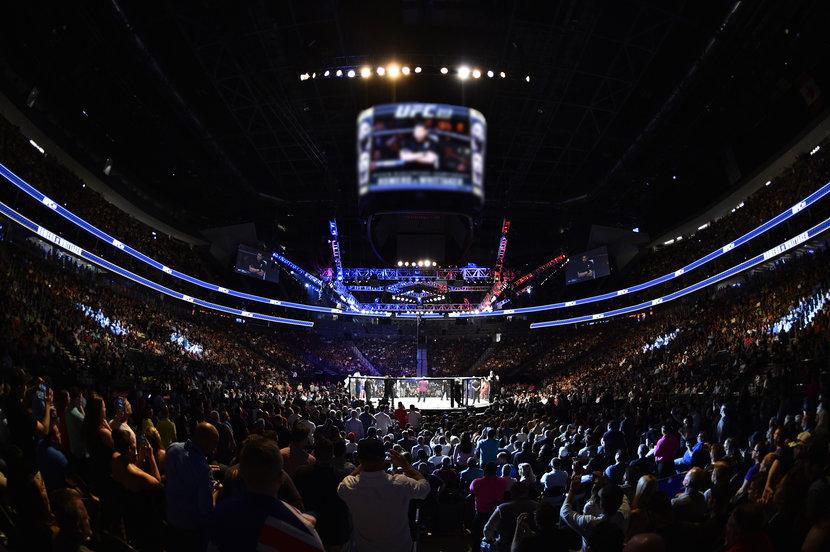 UFC, Abu dhabi, Fight night
