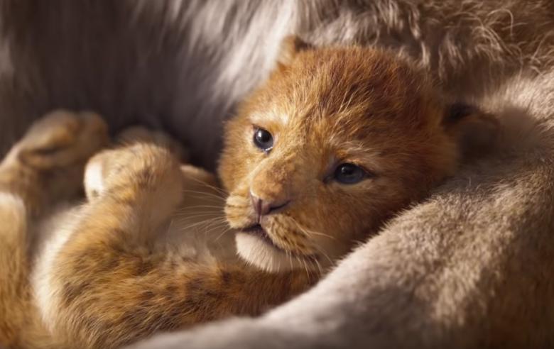 The Lion King, Jon favreau, Films