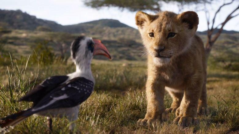 The Lion King, Jon favreau, Disney