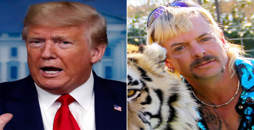Tiger King, Donald Trump, President Trump, Joe Exotic, Netflix